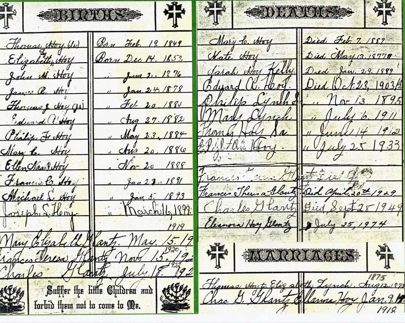 Elizabeth Lynch Hoy's Family Bible